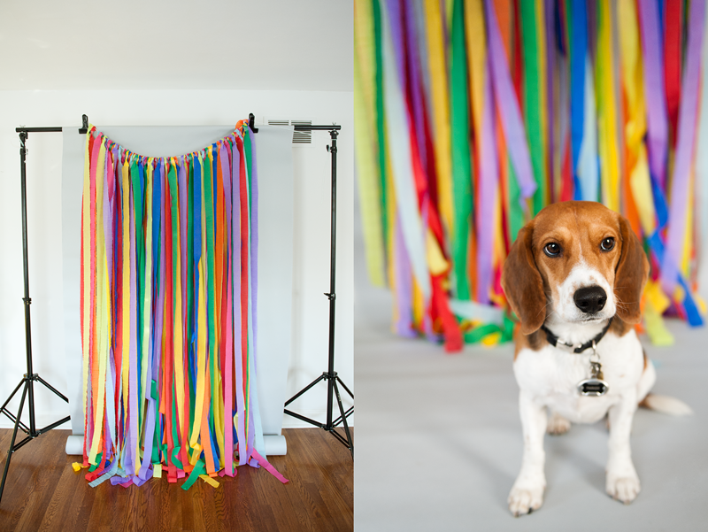 CREATIVE STUDIO BACKDROP IDEAS Fun Unique Photography Backdrops On A Budget MAD HEARTS The Blog